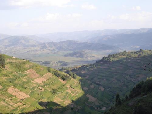 Deforested hills
