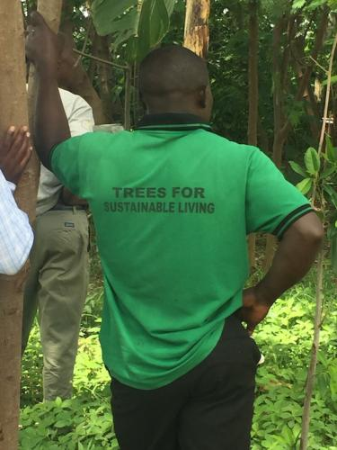 Trees for sustainable living